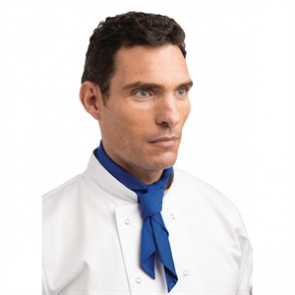Neckerchief Blue