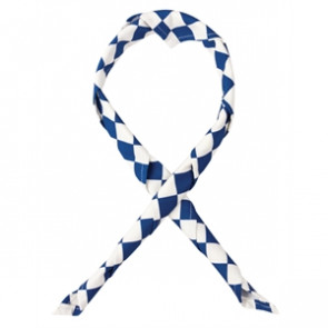 Neckerchief Big Blue and White Check