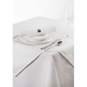 Palmar Polyester White Slipcloth